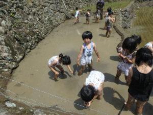 オタマジャクシ探しや泥投げ遊びを楽しみました♪
